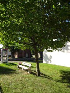 Bücherzelle - Bank - Baum Liebenthal