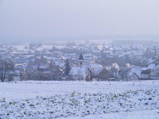 Blick-von-der-Höhe-des-Odenwaldes-auf-Fahrenbach