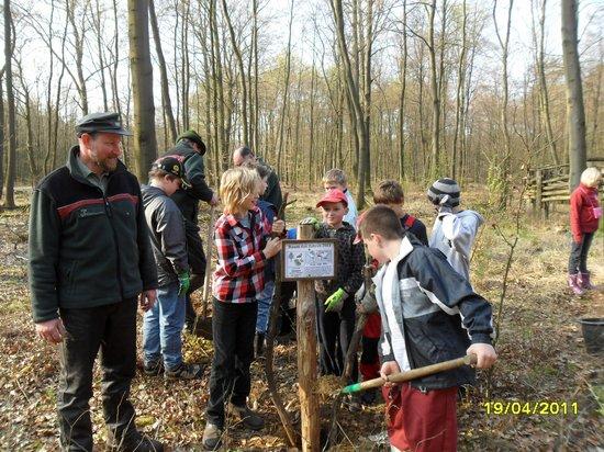 Beschilderung-für-Baum-des-Jahres-2011-Elsbeere-wird-am-Naturlehrpfad-Heiligengrabe-aufgestellt