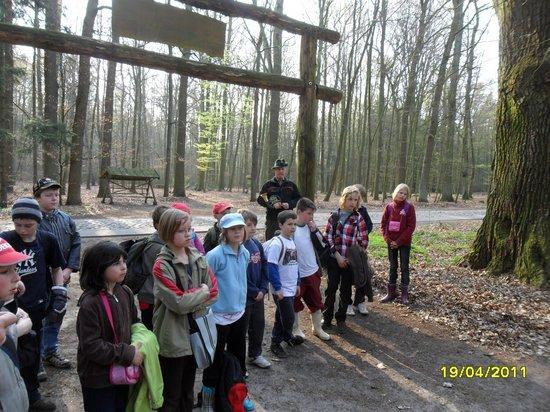 Schüler-Grundschule-Heiligengrabe-pflanzen-Baum-des-Jahres-2011-Elsbeere-am-Naturlernpfad-Heiligengrabe