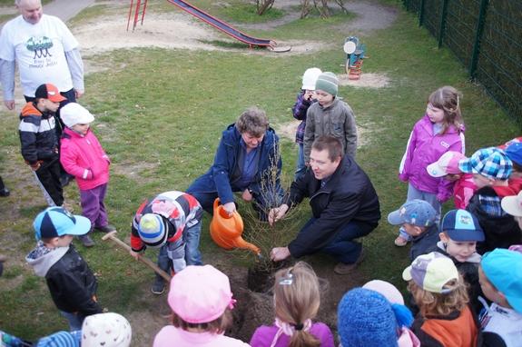 Baum-des-jahres-2012-Pflanzaktion-Europaeische-Laerche-Kita-Blumenthal-Kirsten-Tackmann-und-Holger-Kippenhahn-als-Baumpaten