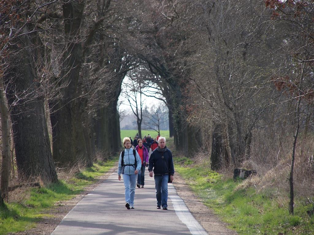 Annenpfad-Pilgern-auf-Brandenburger-allee-kurz-vor-Heiligengrabe-Gruendonnerstag-2012