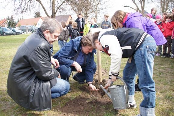 Kleine-Grundschule-Blumenthal-Baumpflanzung-2012-Esskastanie-mit-Baumpaten