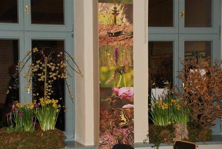 GENESIS-Sonderausstellung - Bürgerhaus Blumenthal - April 2014 - 25