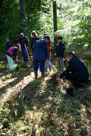 Baum des Jahres 2014 - Traubeneiche - Pflanzung Naturlernpfad Heiligengrabe - 10