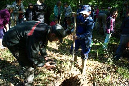 Baum des Jahres 2014 - Traubeneiche - Pflanzung Naturlernpfad Heiligengrabe - 7