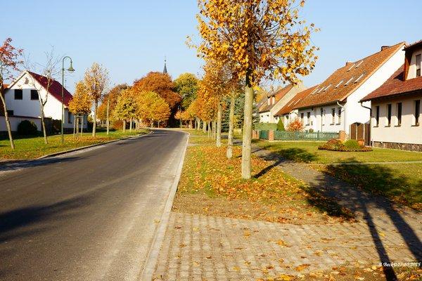 Wernikower Dorfstraße neu