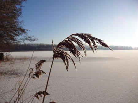 06-Winterbilder 29.01