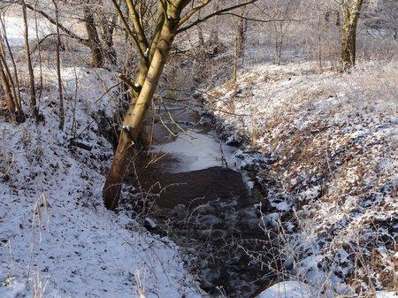 07-Winterbilder 29.01