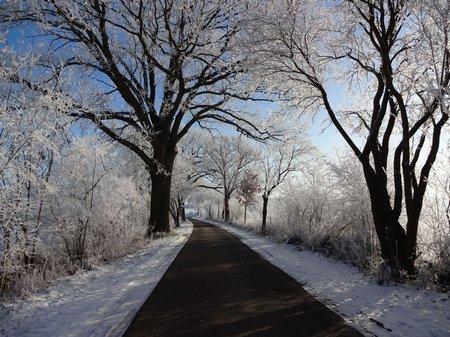 10-Winterbilder 29.01