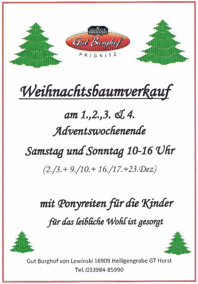 weihnachtsbaumverkauf 2019